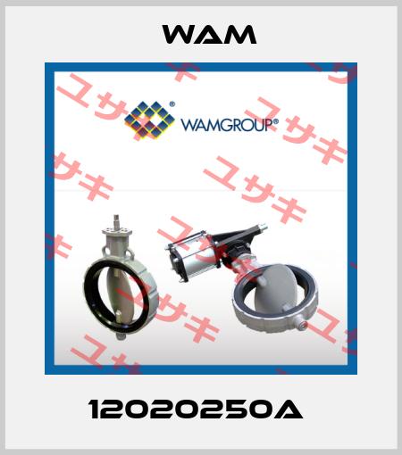 Wam-12020250A  price