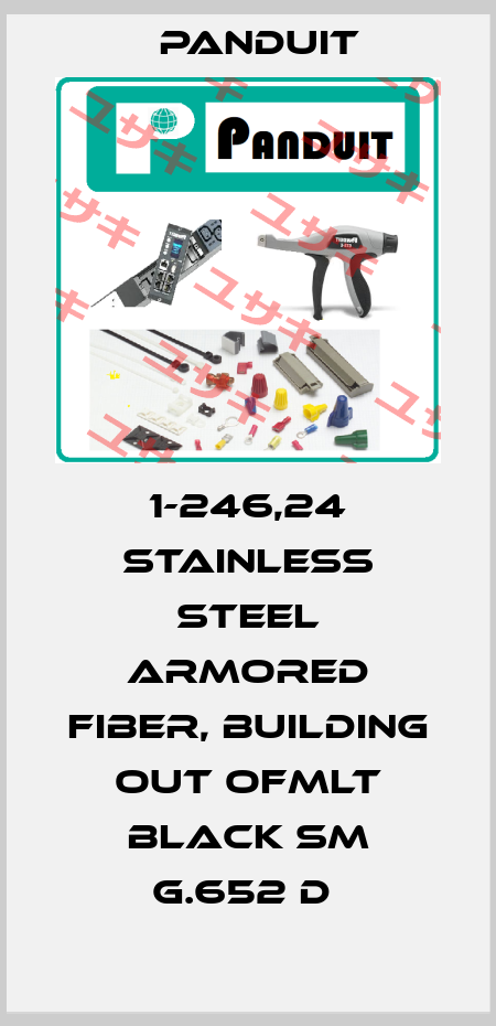 Panduit-1-246,24 STAINLESS STEEL ARMORED FIBER, BUILDING OUT OFMLT BLACK SM G.652 D  price