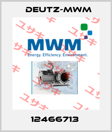 Deutz-mwm-12466713  price