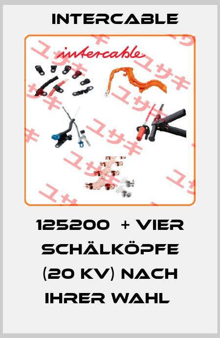 Intercable-125200  + vier Schälköpfe (20 kV) nach Ihrer Wahl  price