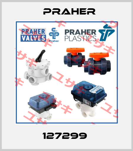 Praher-127299  price